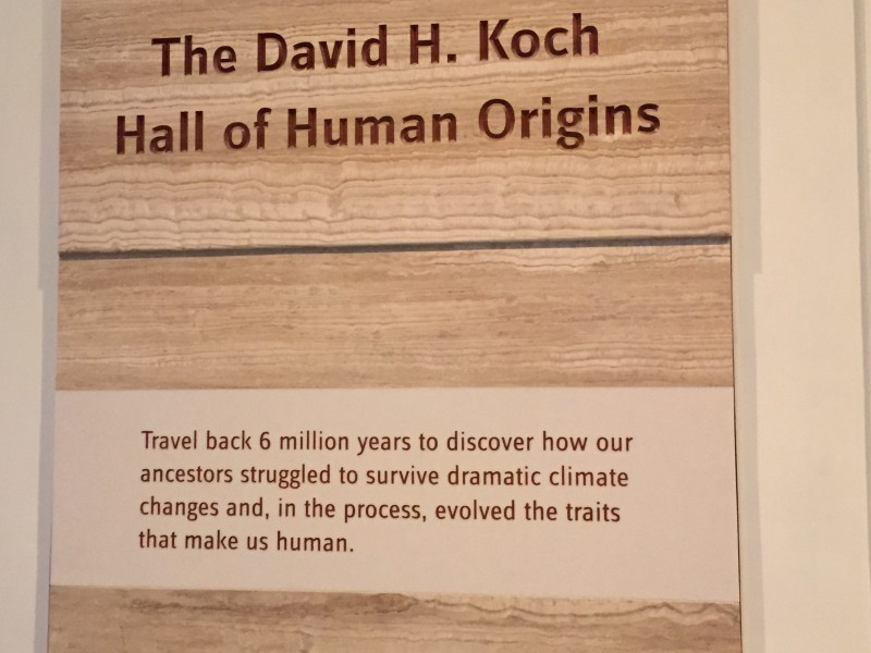 Climate Change on Koch